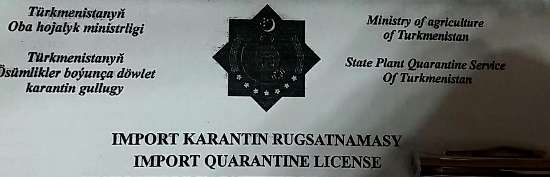 Бюрократия убивает. В каких условиях вынуждены работать туркменские импортеры цветов