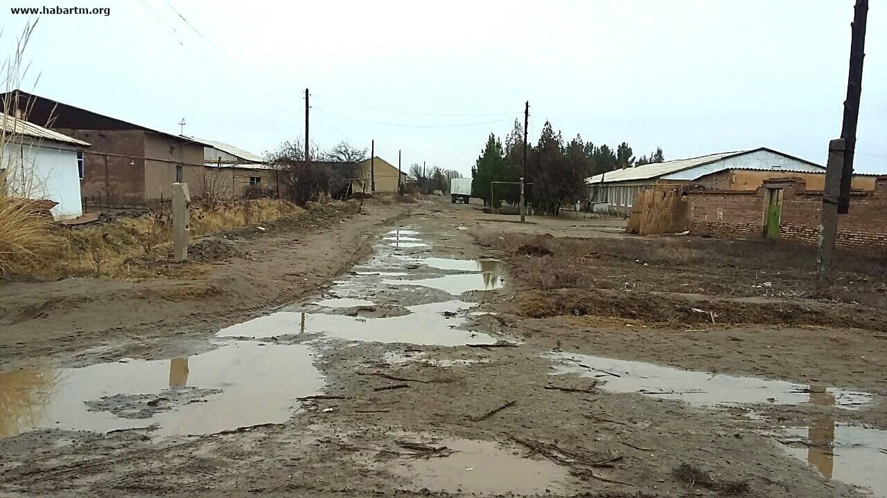 Туркменистан: Программа по развитию села успешно «утонула»