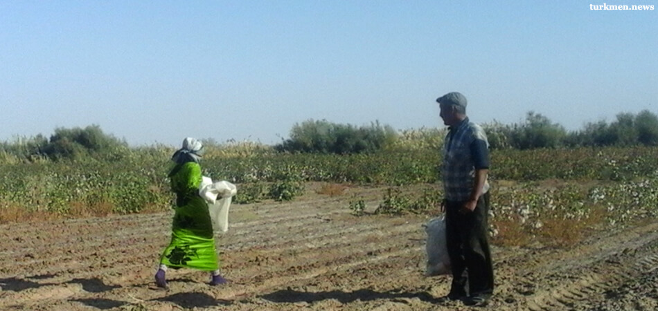 Центральная Азия: На повестке дня - трудовые права