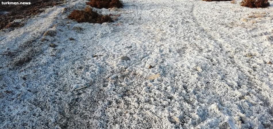 Мертвая земля. Сельчане Дашогуза предупреждают: урожая в 2020 не будет