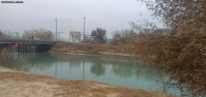 В Дашогузе запретили лов рыбы. Выше по течению находят использованные маски от COVID-19