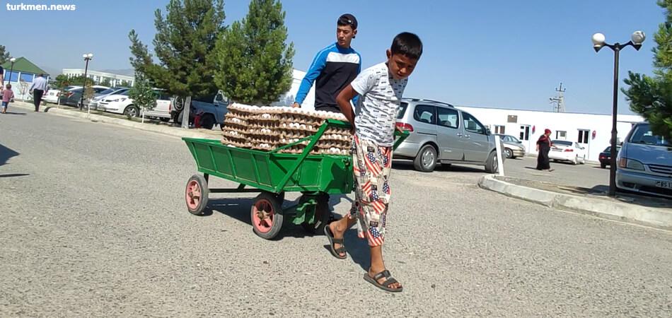 Туркменистан: В частных подворьях резко сокращается поголовье скота и птицы