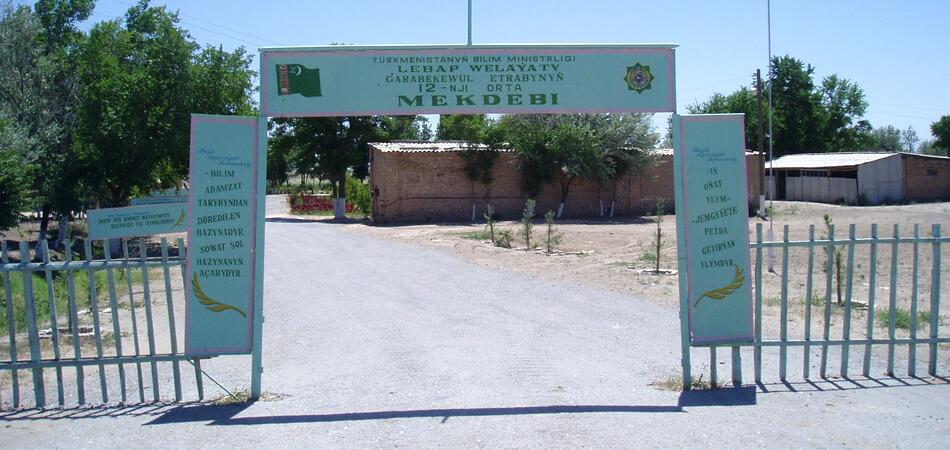 Уличные дружинники и испытатели вакцин: Многосторонняя жизнь туркменских учителей