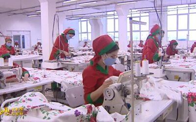 Власти Туркменистана отчитались о высокой занятости в частном секторе