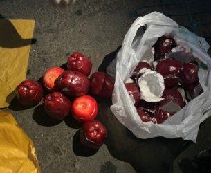Через Туркменистан транзитом провезли 10 килограммов метамфетамина в яблоках